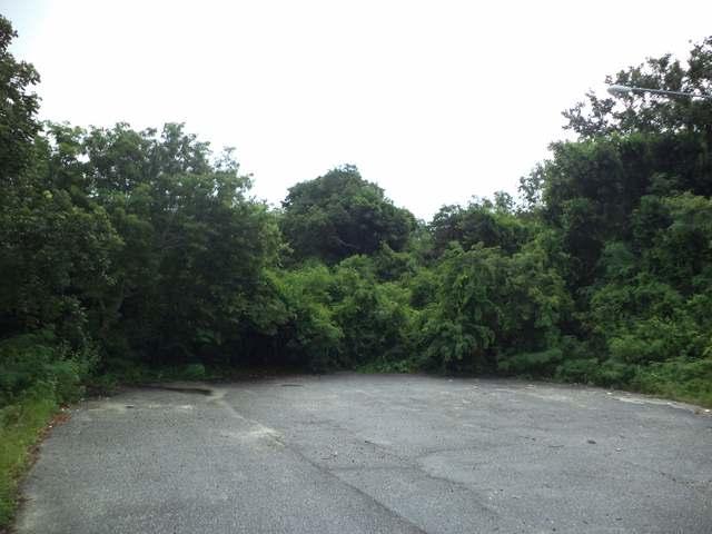 土地,用地 为 销售 在 Westridge Acreage, Westridge Drive Westridge Estates, Westridge, 新普罗维登斯/拿骚 巴哈马
