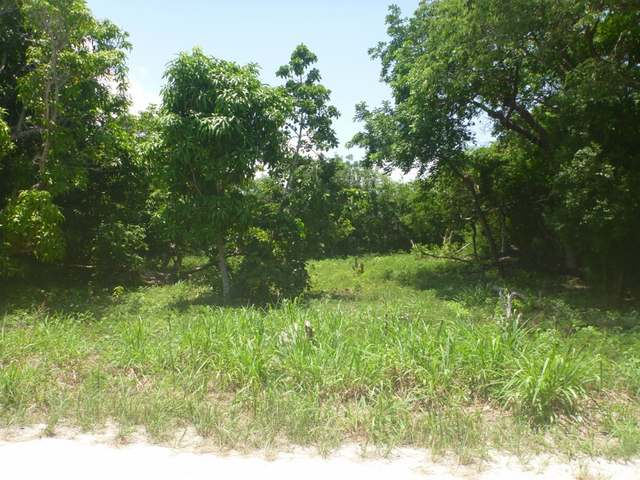 Land for Sale at Vivian Pinder Road Russell Island, Eleuthera Bahamas