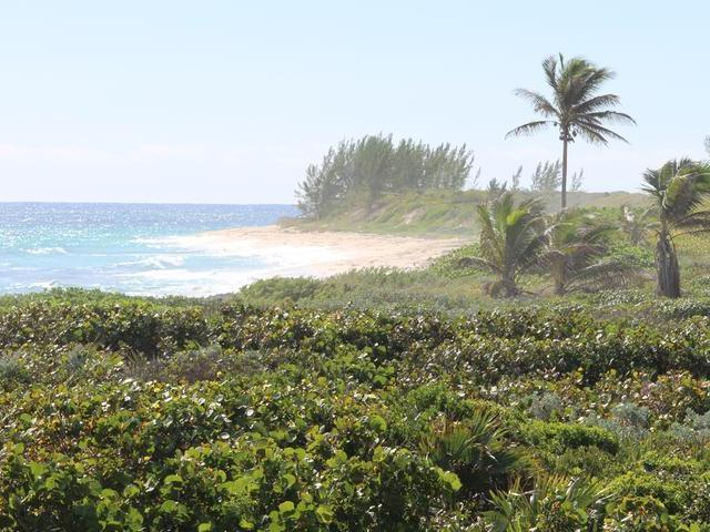 Land for Sale at Oceanfront Acre Lh Abaco Little Harbour, Abaco Bahamas