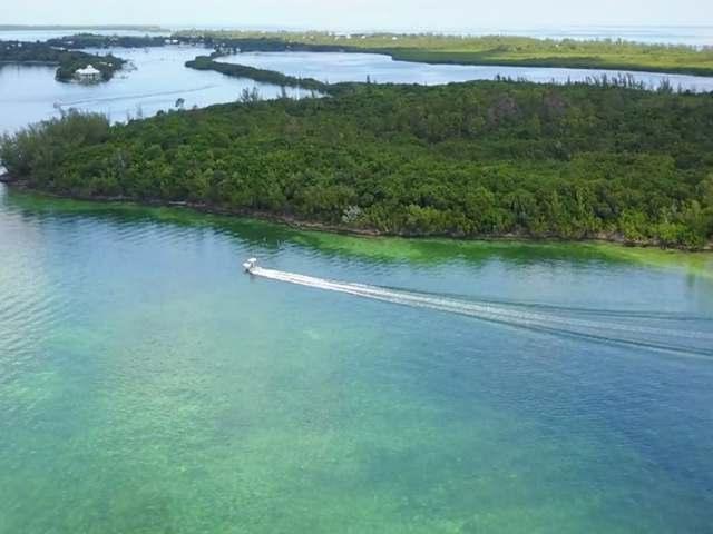 土地,用地 为 销售 在 Green Turtle Cay White Sound, 绿龟岛, 阿巴科 巴哈马