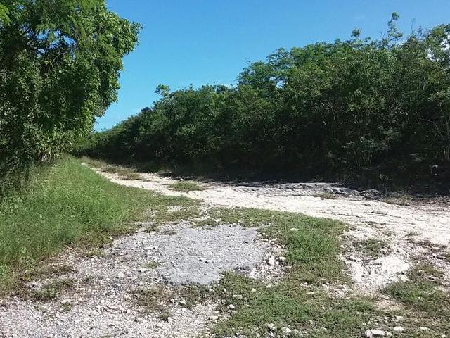 土地,用地 为 销售 在 Exuma Acreage, Exuma Acre Lot 乔治城, 伊克苏马海 巴哈马