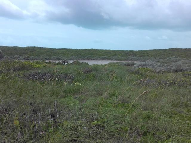 Land for Sale at Oceanfront Acreage, Simms, Long Island Simms, Long Island Bahamas