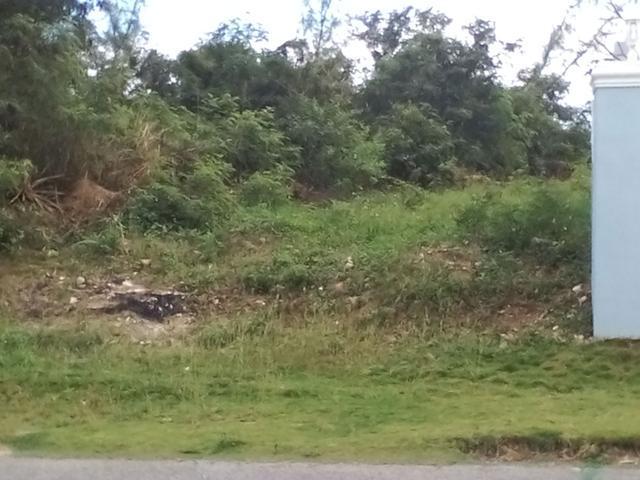 土地,用地 为 销售 在 164 Atlantic Drive Westridge Estates, Westridge, 新普罗维登斯/拿骚 巴哈马