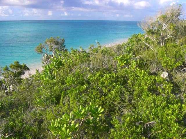 Land for Sale at Rose Island Other Rose Island, Rose Island Bahamas