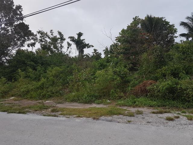 土地,用地 为 销售 在 Fernbury Avenue Joe Farrington Road, 新普罗维登斯/拿骚 巴哈马