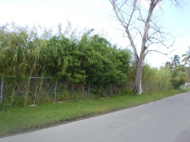 土地,用地 为 销售 在 007 Ferguson Rd(Perpall Tr.) Bay Street, Downtown, 新普罗维登斯/拿骚 巴哈马