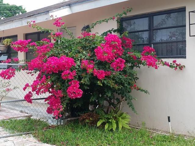 多户住宅 为 销售 在 Monastery Street Bernard Road, 新普罗维登斯/拿骚 巴哈马