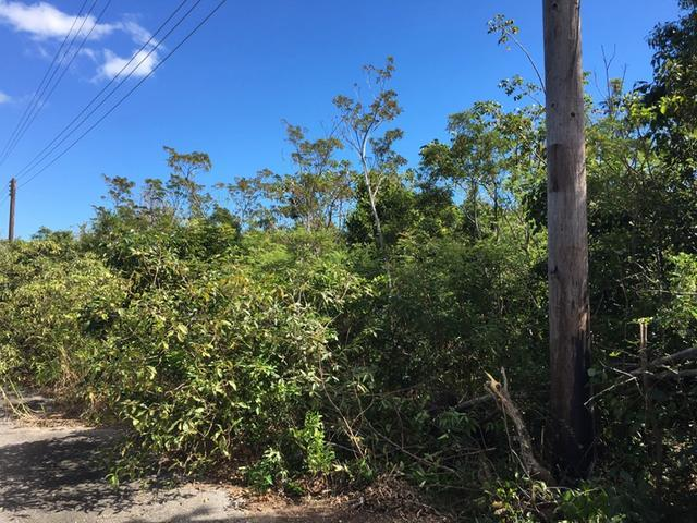 Land for Sale at South Ocean Acreage, Hillside Place South Ocean, Nassau And Paradise Island Bahamas