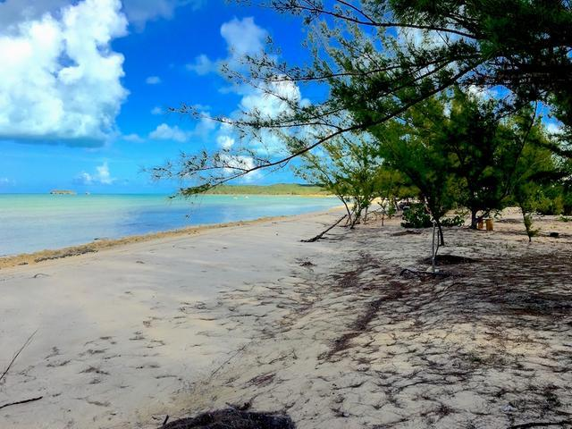 土地,用地 为 销售 在 Beachfront Lot - Whymms Wemyss Settlement, 长岛 巴哈马