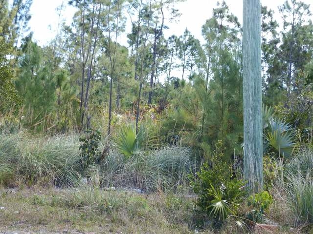 Land for Sale at RESIDENTIAL LOT, Sc Bootle Highway Other Abaco, Abaco Bahamas