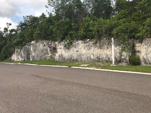 Terreno por un Venta en Balmoral Lot #A14 Balmoral, Prospect Ridge, Nueva Providencia / Nassau Bahamas