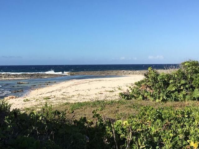 独户住宅 为 销售 在 16 Acres With Beach Home Miley, 长岛 巴哈马