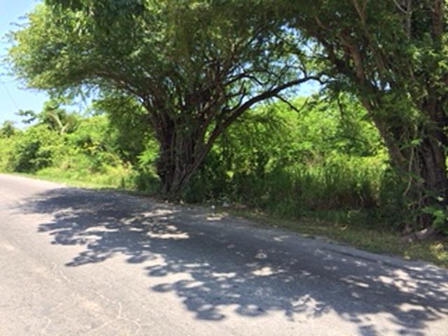商用 为 销售 在 Lot # 1 Bernard Road Bernard Road, 新普罗维登斯/拿骚 巴哈马