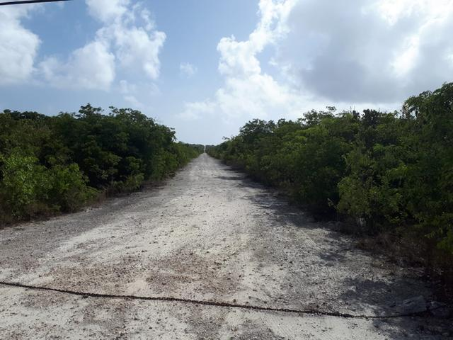Additional photo for property listing at Queens Highway Other Long Island, Long Island Bahamas