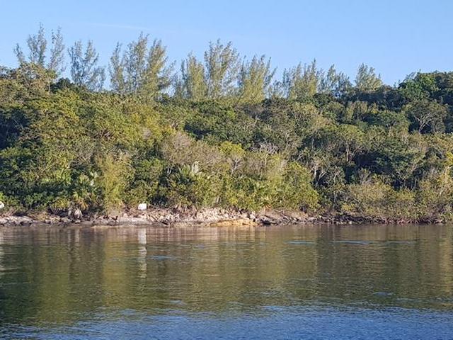 土地,用地 为 销售 在 Pirates Way Great Harbour Cay, 贝里群岛 巴哈马