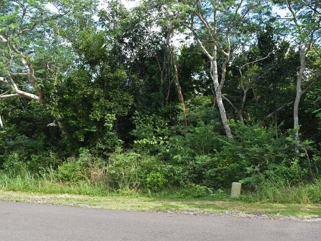土地,用地 为 销售 在 Westridge Westridge Estates, Westridge, 新普罗维登斯/拿骚 巴哈马