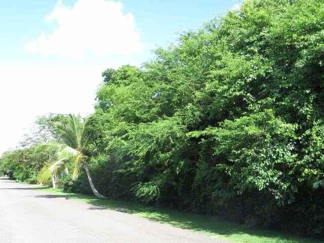 Terreno por un Venta en Camperdown Camperdown, Nueva Providencia / Nassau Bahamas